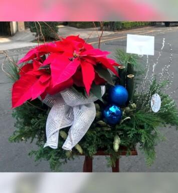 Florerías para navidad México Df