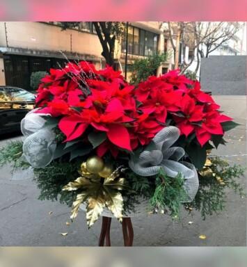 Envió de flores para navidad en Ciudad de México