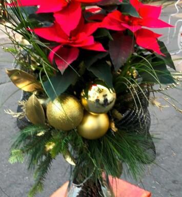 Flores para navidad a domicilio CDMX