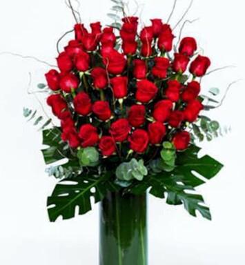 Rosas selectas