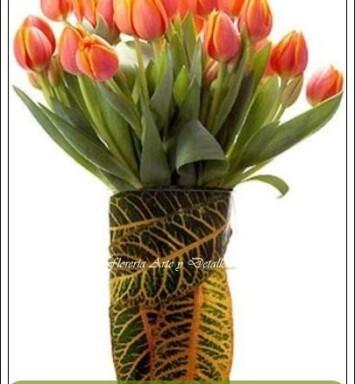 Envío de Tulipanes